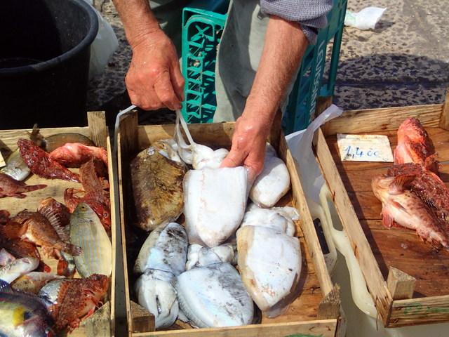 Trapani Fish Market fresh catch