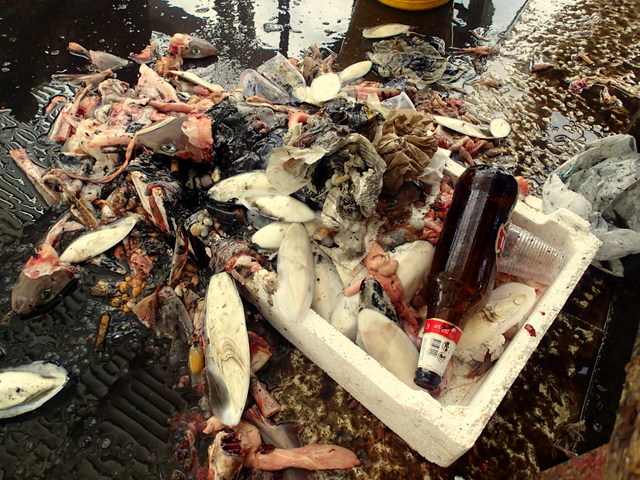 Mess left after Trapani fish market