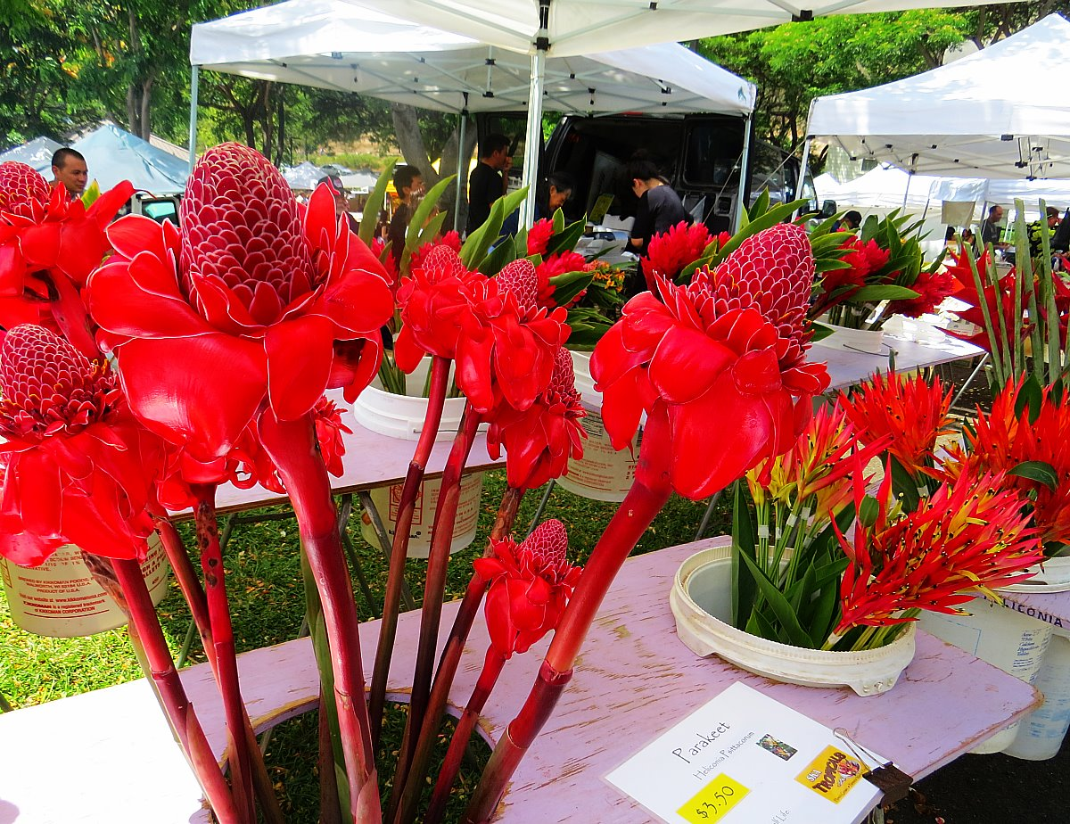 Why You Shouldn't Miss The KCC Farmer's Market On Oahu, Hawaii